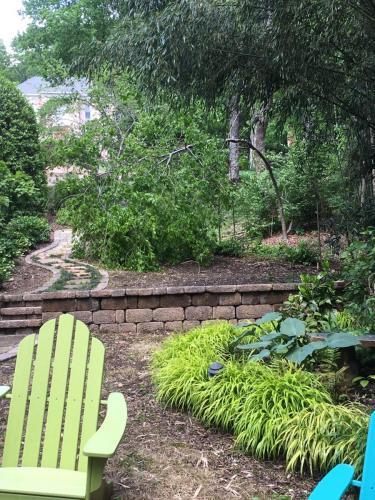 Backyard wall, steps and shrubs