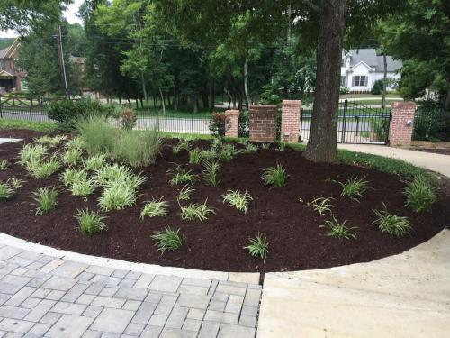 Shrub bed and paver driveway